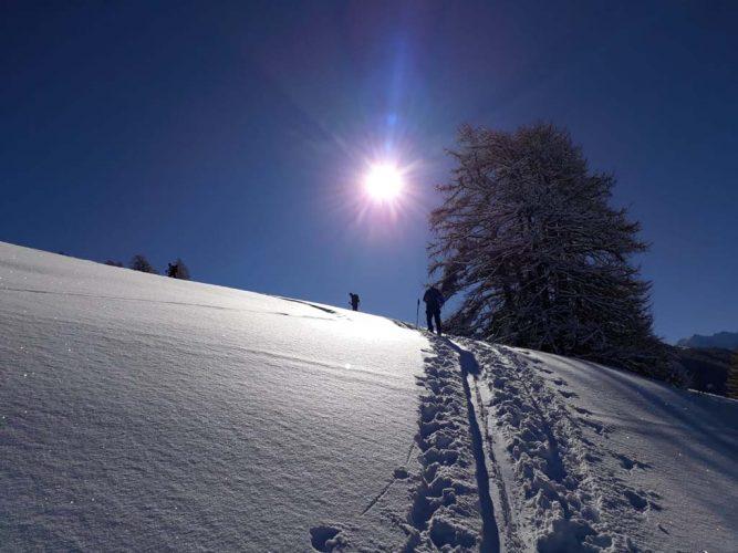 maison-de-la-montagne-naves-savoie-ski-de-randonnée-013